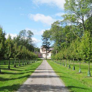 Skånelaholms slottspark