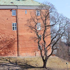 Västerås slottspark