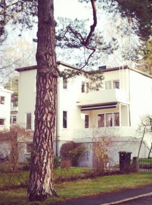 Trädplan för Södra Ängby
