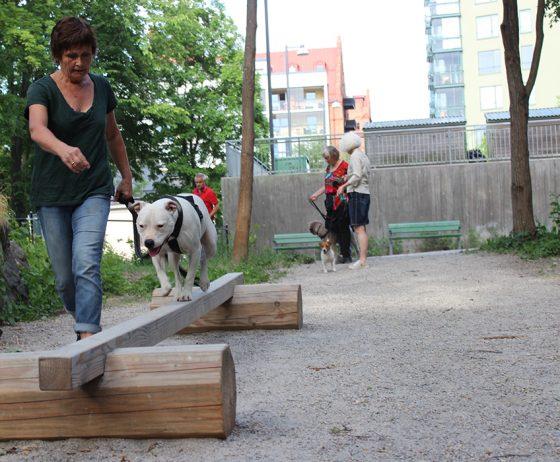 Invigning av hundrastgård
