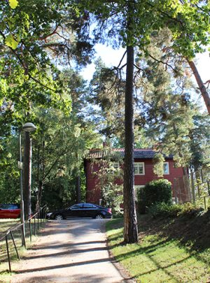 Trädplan för Stora Mossen