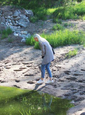Salamanderdammar – Viksberg